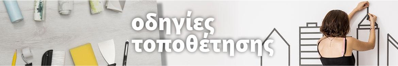 ODIGIES TOPOTHETISIS